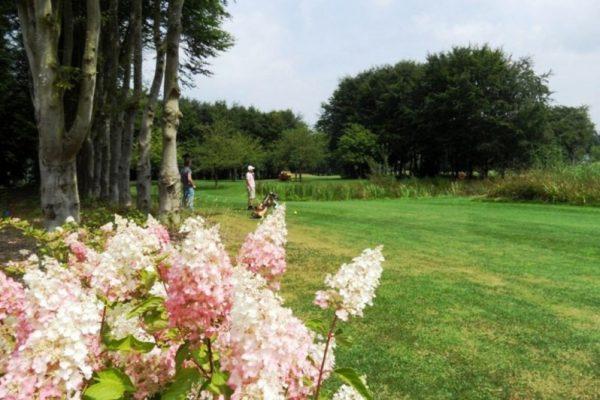 lefauconnier.nl_golf07